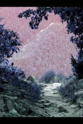 """""""La Planète bleue-01"""", photographie, tirage limité sur papier couleur 20x30 cm, sans cadre"""